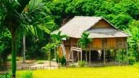 Maison sur pilotis des Thai dans la vallée de Mai Chau