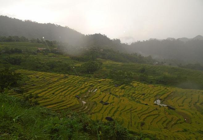 Randonnée Trekking reserve Pu Luong Mai Chau