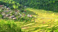Village Kho Muong