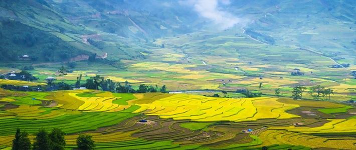 Guide francophone au Vietnam VOYAGE PAS CHER Guide