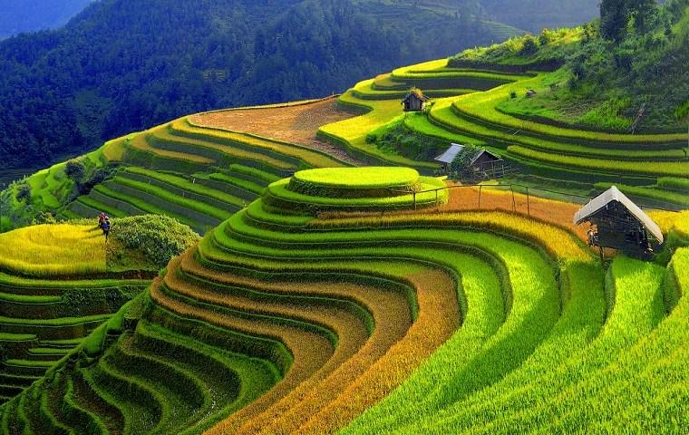 Aller de Hanoi a Mu Cang Chai agence de voyage locale au