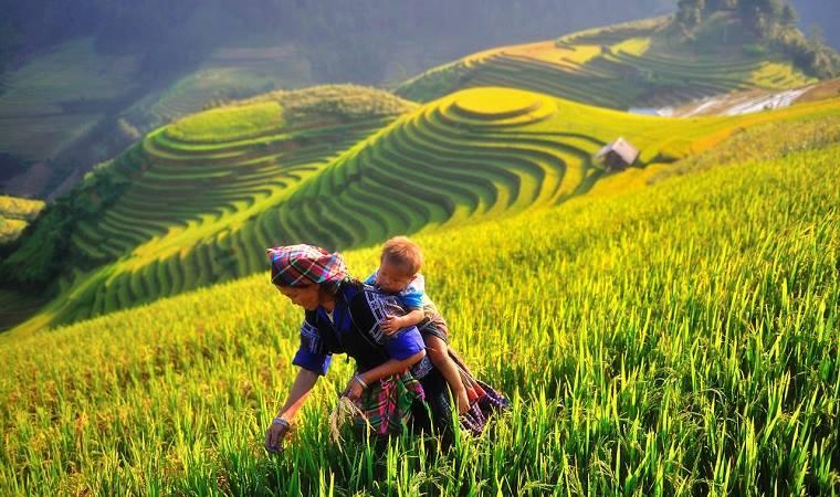 La Pan Tan, Mu Cang Chai - Voyage Vietnam Laos Cambodge