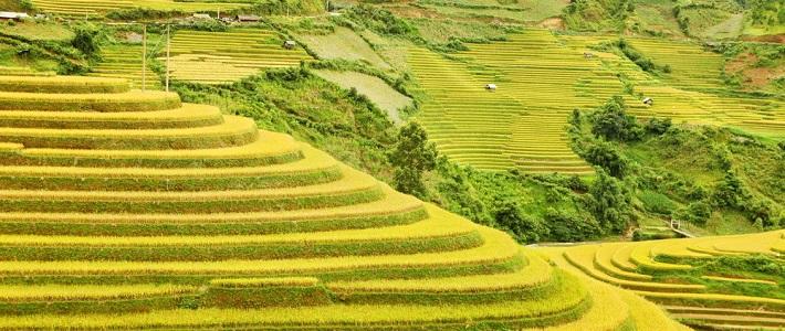 Voyage Yên Bai agence de voyage au vietnam circuit au