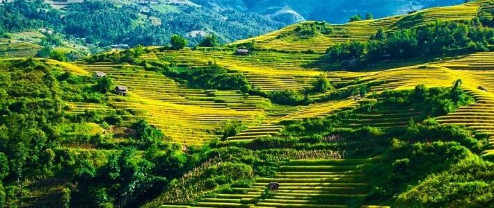 Voyage Tu Le Mu Cang Chai