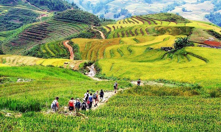 Vallée de Muong Hoa Sapa