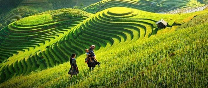 Trekking à Sapa Vietnam