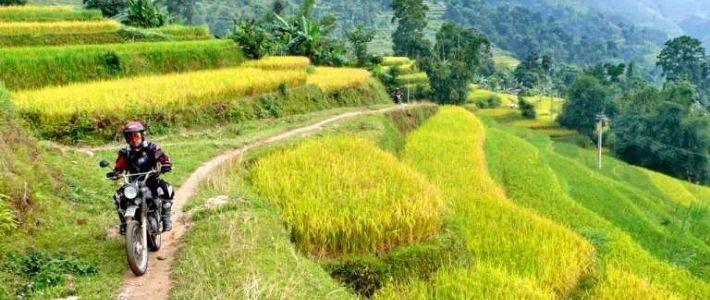 se rendre Hanoi Ha Giang pour rizières en terrasse