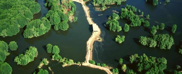 La mangrove Can Gio - Circuit Delta du Mékong