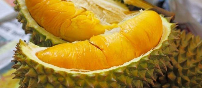 Durian - Séjour au Vietnam