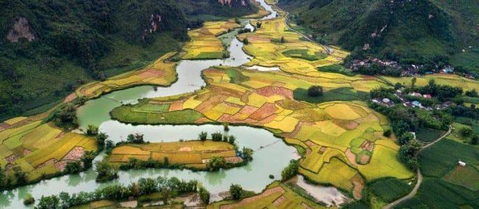 Partir en voyage au Vietnam avec agence locale