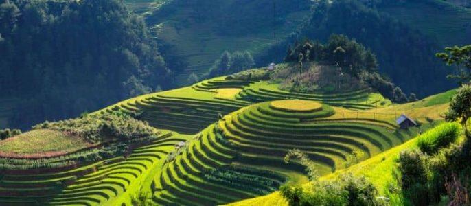 Partir en voyage au Nord Vietnam avec agence locale